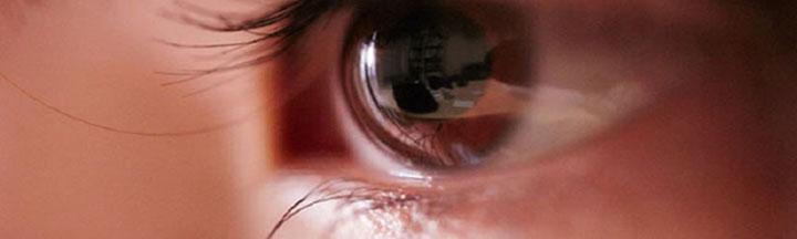 CBrown Eye-long2.jpg